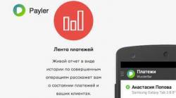В России начала работу новая платежная система Payler