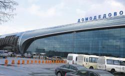 Новый автобусный рейс до аэропорта «Домодедово»