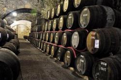 Бесплатная винная экскурсия в Испании порадует энотуристов